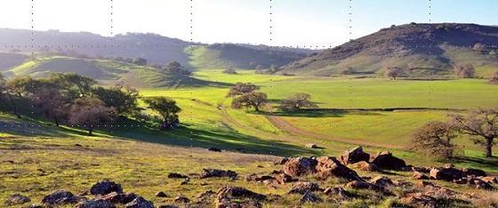 BAO Coyote Valley Hike