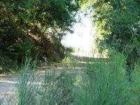 Almaden_Quicksilver_County_Park_17.JPG