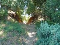 Almaden_Quicksilver_County_Park_31.JPG