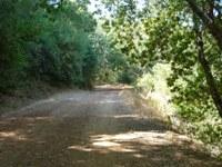 Almaden_Quicksilver_County_Park_8.JPG