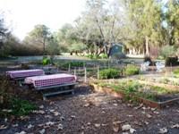 Ardenwood_Historic_Farm_12.jpg
