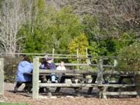 Ardenwood_Historic_Farm_14.jpg