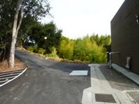 Bamboo_Garden_Los_Altos_1.JPG