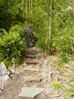 Bamboo_Garden_Los_Altos_14.JPG