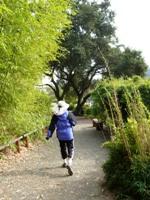 Bamboo_Garden_Los_Altos_9.JPG