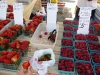 Belmont_Farmers_Market_10.jpg