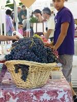 Belmont_Farmers_Market_5.jpg