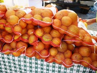 Belmont_Farmers_Market_9.jpg