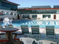 Bay area older adults expand your world - Campbell community center swimming pool ...