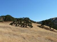 Del_Valle_County_Park_Full_Review_10.jpg