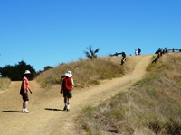 Fremont_Older_Open_Space_Preserve_13.jpg