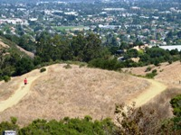 Fremont_Older_Open_Space_Preserve_16.jpg