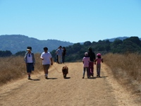 Fremont_Older_Open_Space_Preserve_18.jpg