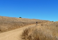 Fremont_Older_Open_Space_Preserve_7.jpg