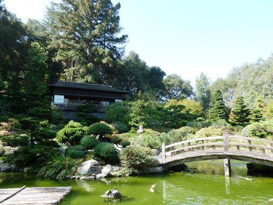 Hakone_Trip_28.jpg