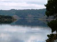 Lake_Chabot_Marina_Park_12.JPG