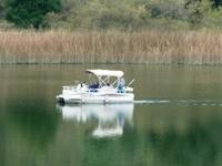 Lake_Chabot_Marina_Park_13.JPG