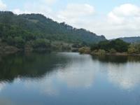 Lake_Chabot_Marina_Park_16.JPG