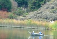 Lake_Chabot_Marina_Park_24.JPG