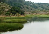 Lake_Chabot_Marina_Park_28.JPG