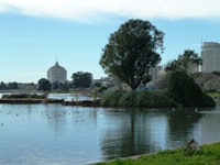 Lake_Merritt_Wildlife_Full Review_2.jpg
