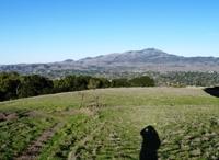 Las_Trampas_Regional_Wilderness_14.jpg
