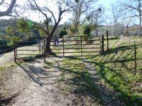 Las_Trampas_Regional_Wilderness_3.jpg