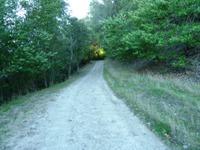 Las_Trampas_Regional_Wilderness_7.jpg