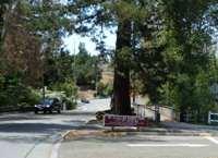 McClellan_Ranch_Park_1.jpg