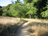 Montebello_Open_Space_Preserve_12.jpg
