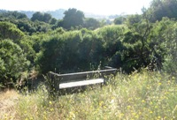 Montebello_Open_Space_Preserve_19.jpg
