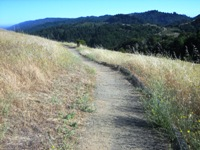Montebello_Open_Space_Preserve_5.jpg