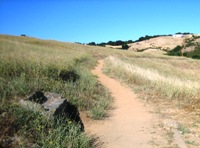Montebello_Open_Space_Preserve_7.jpg
