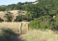 Montebello_Open_Space_Preserve_8.jpg