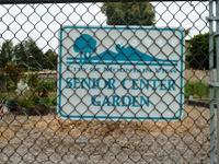 MountainView_SrCenter_Community_Garden1.jpg