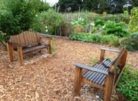 Palo_Alto_Community_Garden_9.JPG