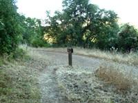 Pichetti_Ranch_Open_Space_Preserve_32.jpg