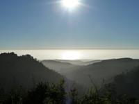 Purisma_Creek_Redwoods_24.JPG