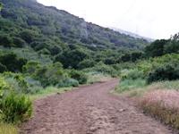 Rancho_SanAntonio_CountyPark_9.JPG