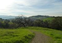 Santa_Teresa_County_Park_7.jpg
