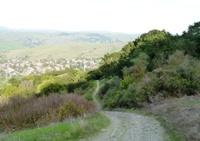 Santa_Teresa_County_Park_9.jpg