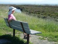 Shoreline_Park_13.jpg