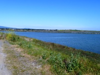 Shoreline_Park_22.jpg