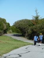 Shoreline_Park_5.jpg