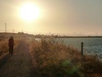 Sunnyvale_Baylands_Park_28.JPG
