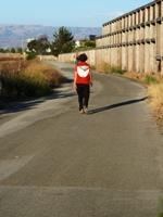 Sunnyvale_Baylands_Park_6.JPG