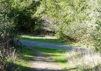 Tilden_Regional_Park_Full_Reivew_14.jpg