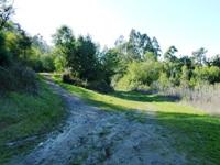 Tilden_Regional_Park_Full_Reivew_17.jpg