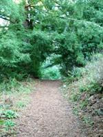 Tilden_Regional_Park_Full_Reivew_7.jpg