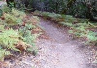 Upper_Stevens_Canyon_County_Park_11.jpg